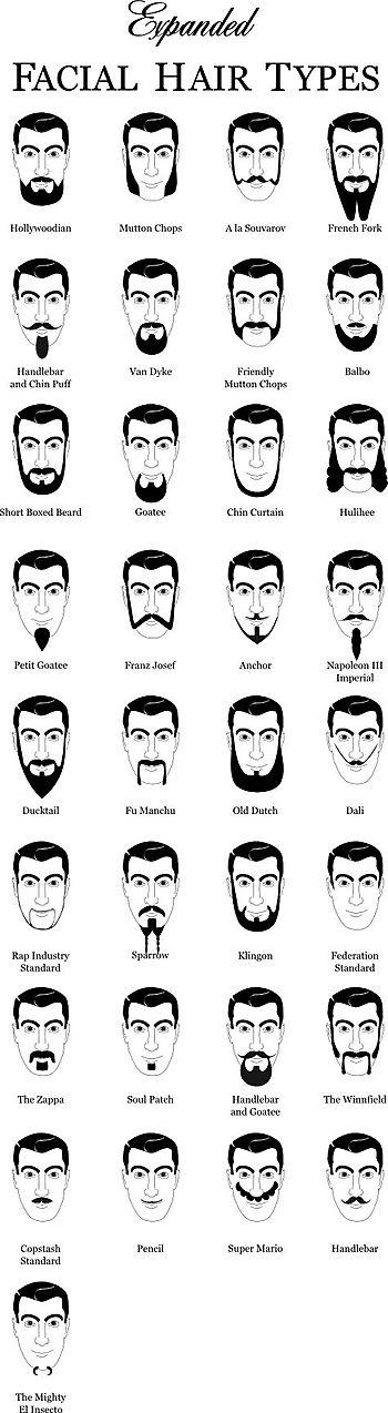Beardtypes