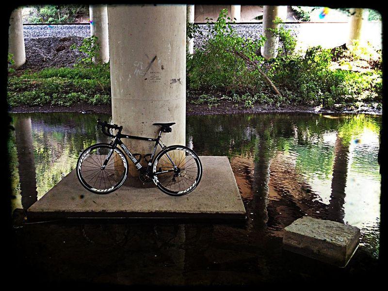 Zig Ride Bike